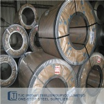 ASTM A240/ A240M 904L(UNS N08904) Pressure Vessel Stainless Steel Plate/ Coil/ Strip